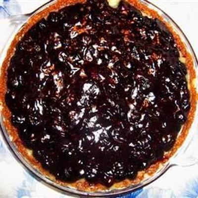 Luscious Blueberry Pie Perfection!