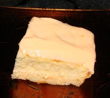 florida turuncu kek