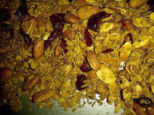 ev yapımı granola mike's hindistancevizi amond karışımı